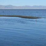 Te Waihora / Lake Ellesmere