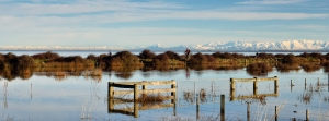flooded-paddocks-at-ataahua-with-snow