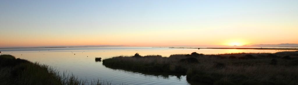 Kaituna river mouth at dusk