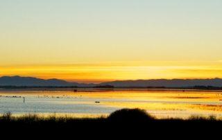 sunset-te-waihora
